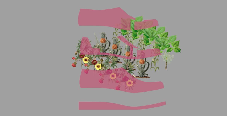 Thinking Footwear through a Regenerative Polyculture